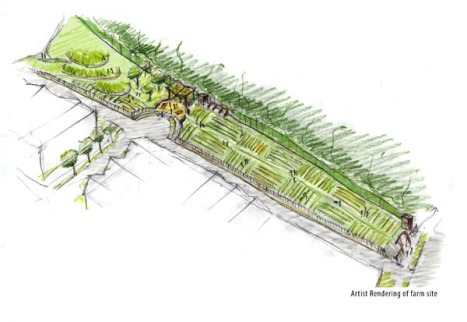 Artist's rendering of new Community Farm at Rainier Vista