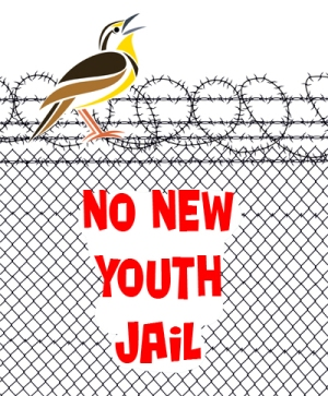 NoNewYouthJail_web