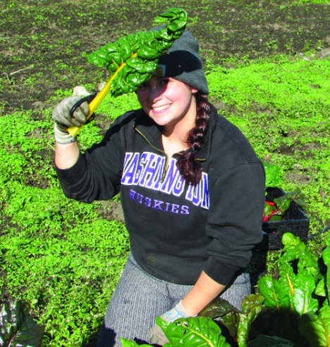 Who needs a visor when you have Swiss chard? Dani Ladyka, one of our new crop of Apple Corps members, finds a bit of shade at the Marra Farm Giving Garden. (Photo by Madeline Corbin)